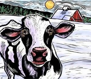 Cow Tee Shirt Graphic