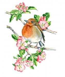 Robin on a Branch, by Donnel Barnum